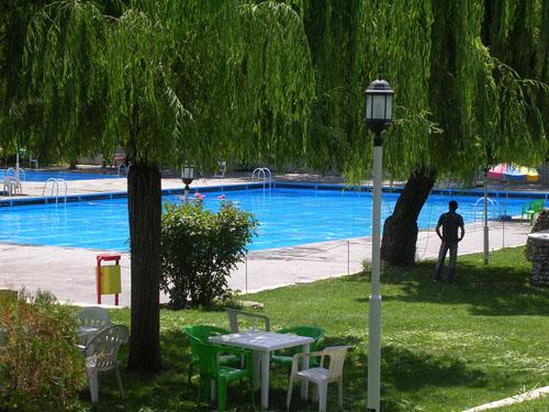 شنا در تهران