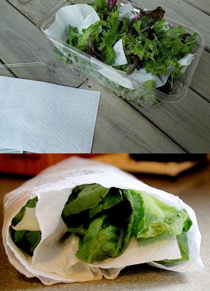 برای تازه ماندن سبزی چکار کنیم