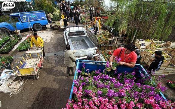 بازار گل محلاتی از بهترین بازار گل و گیاه تهران