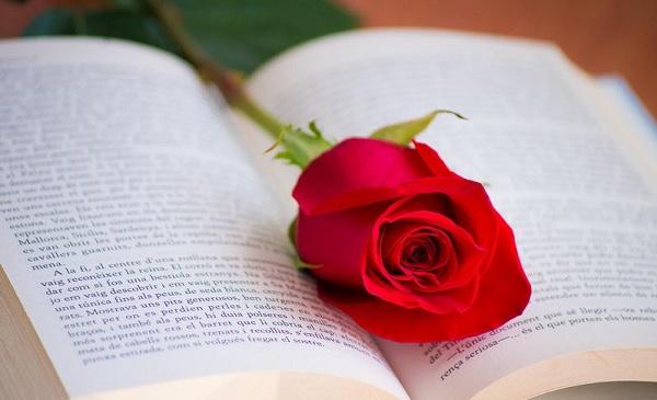 جذاب ترین رمان عشقی تاریخ