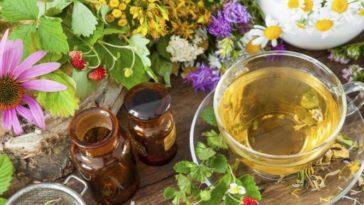جلوگیری از سرطان با گیاهان دارویی