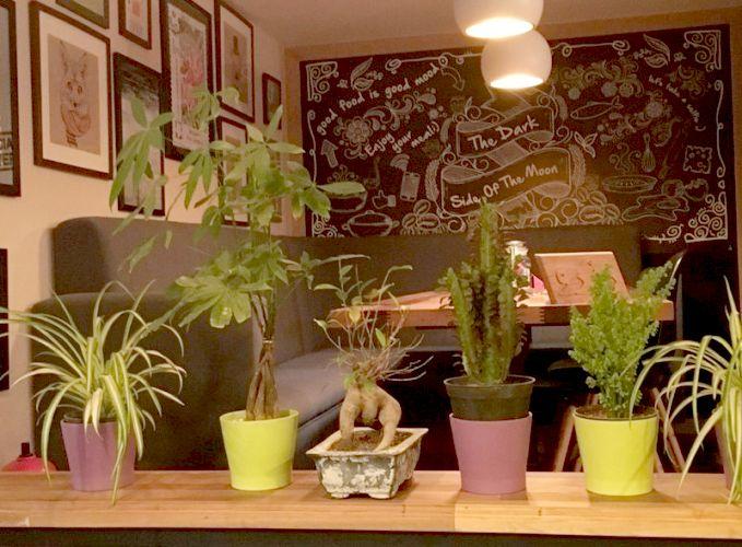 کافه رستوران کنجد یک کافه رستوران خوب در اهواز