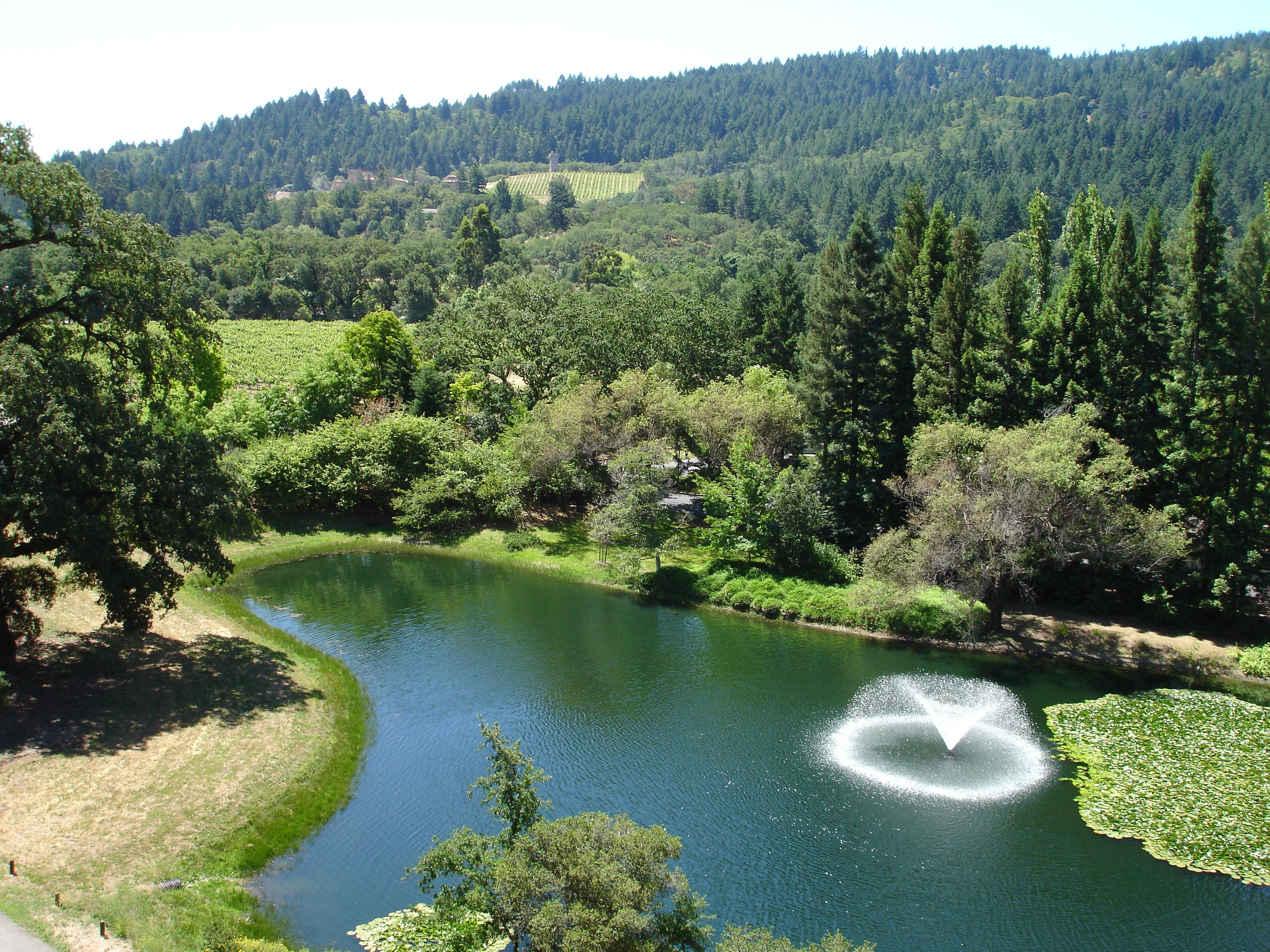دره زیبای ناپا