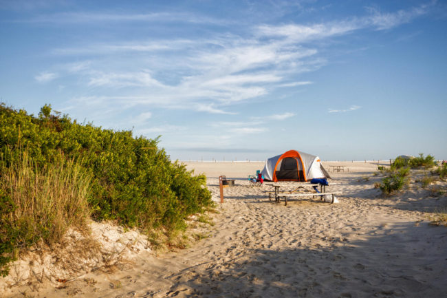 جزیره Assateague