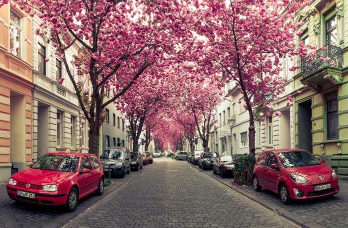 معروف ترین خیابان های دنیا و لیستی از خیابان های جالب و دیدنی در دنیا upcargo