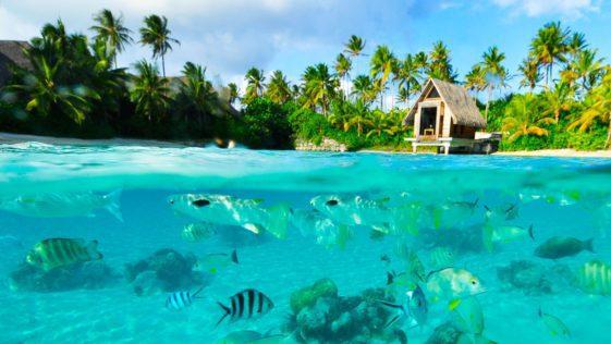 بهترین و زیباترین جزایر جهان