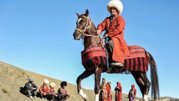 اسب ترکمن را بهتر بشناسیم