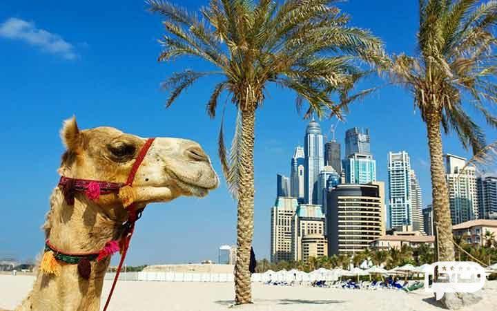 بهترین دیدنی های دبی