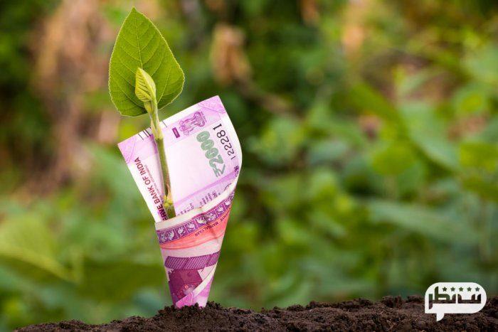 حفظ سرمایه در بازار بورس